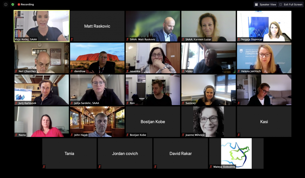 Posnetek zaslona videokonference